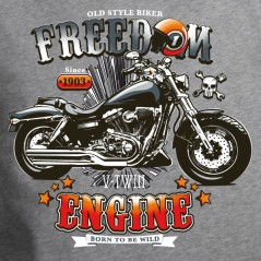 Moto freedom engine
