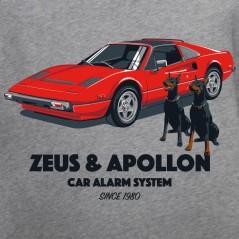 Zeus & Apollon