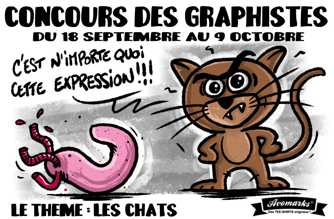 concours CHATS