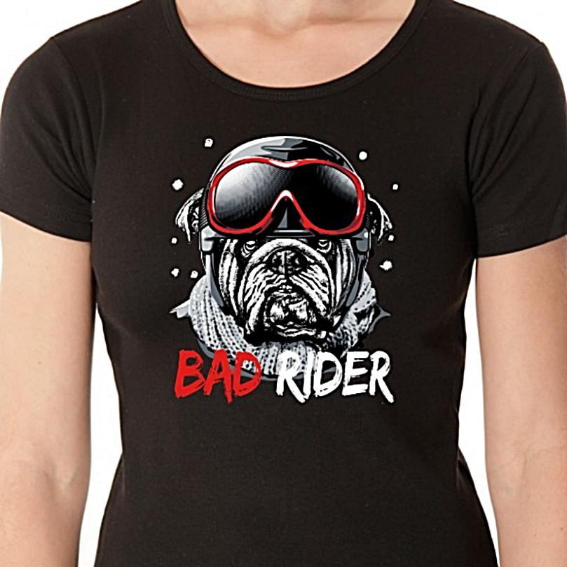 t-shirt-les-alpes-bad-rider